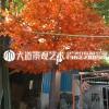 仿真枫叶树假枫树大型商场酒店日式料理装饰许愿室